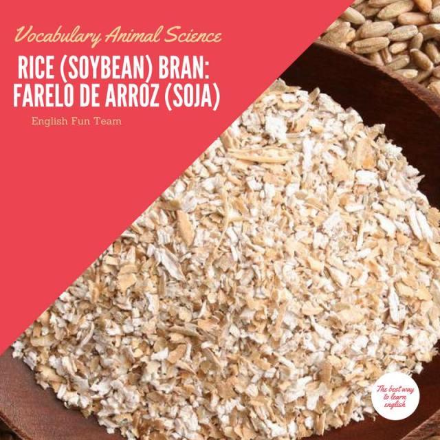 Rice Bran - Farelo de Arroz