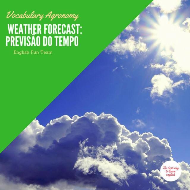 Weather Forecast -